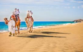 Viaje a Los Cabos en oferta. Para más descuentos y promociones, visita PromoDromo.